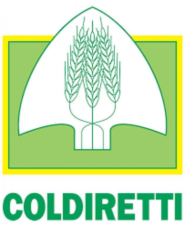 Appuntamento con gli esperti Coldiretti su cibo ed etichette