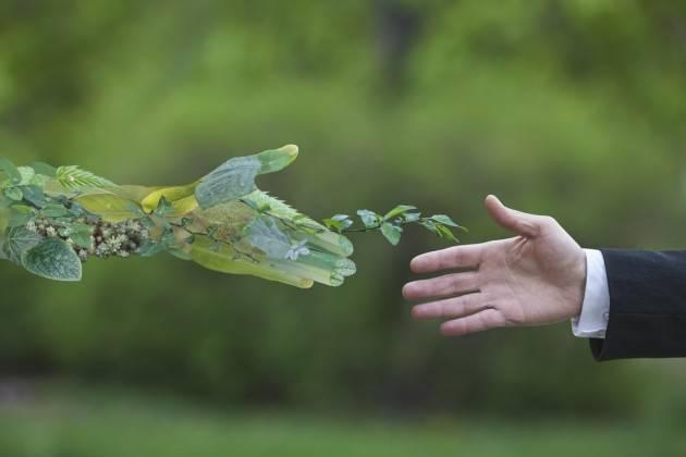 Crema SCUOLA DI EDUCAZIONE ALL'ECONOMIA  ANNO 2020 CORSO: GREEN ECONOMY | Piero Carelli