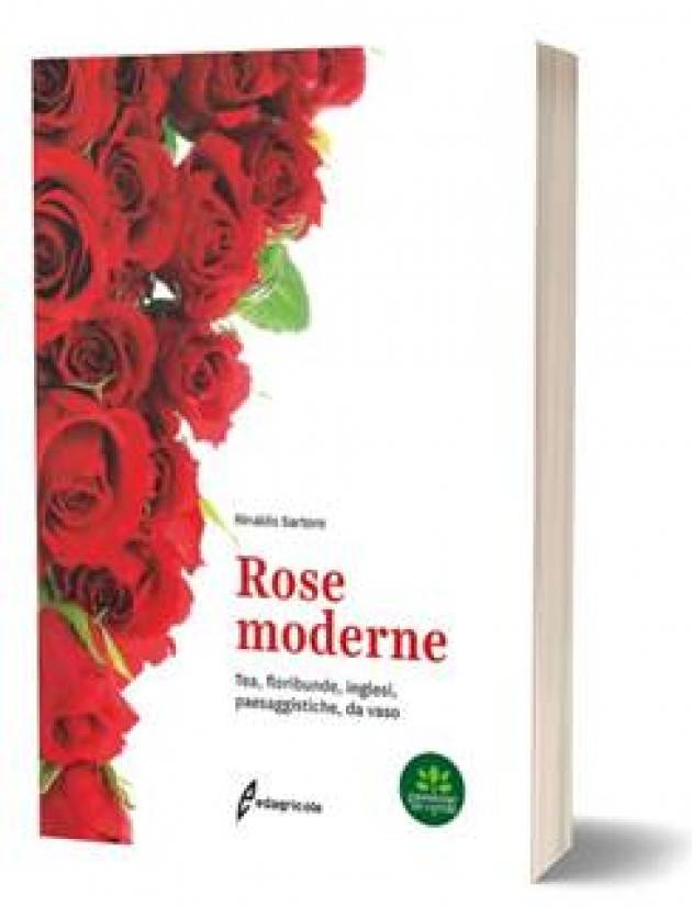 EDAGRICOLE ROSE MODERNE Tea, floribunde, inglesi, da vaso | Rinaldo Sartore