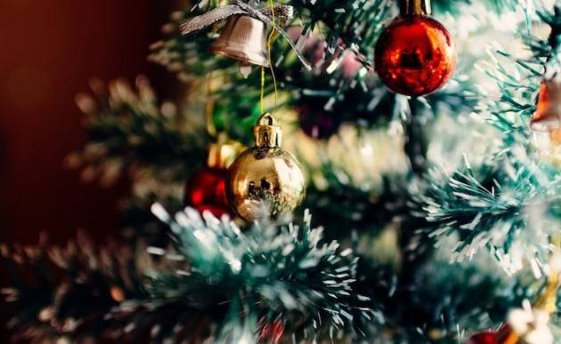 """8 dicembre, scatta l'addobbo dell'abete natalizio: sceglierlo """"vero"""" aiuta l'agricoltura"""