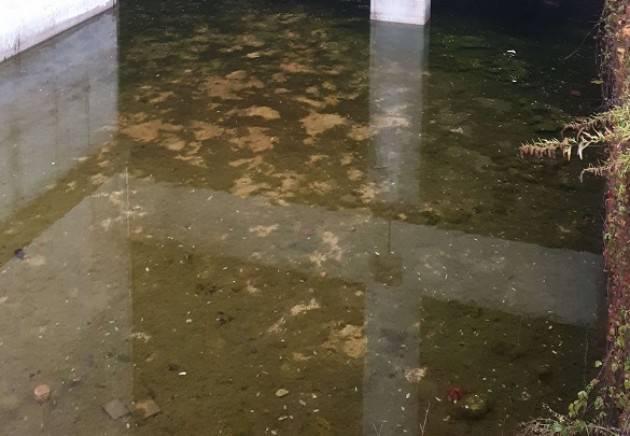 M5S Cremasco : alcune fotografie della situazione odierna dello stato dell'ecomostro di CL.