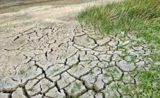 """Coldiretti, addio al quinto anno più caldo di sempre: la """"tropicalizzazione"""" provoca danni"""