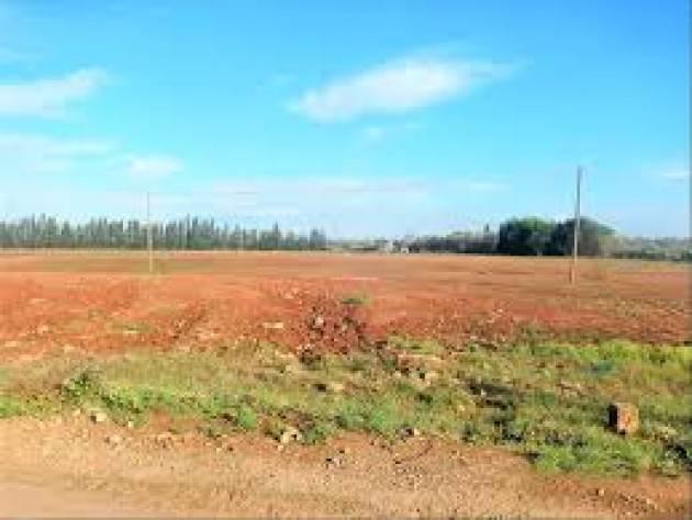 A Busto Arsizio 50 ettari di terreni comunali tornano all'agricoltura