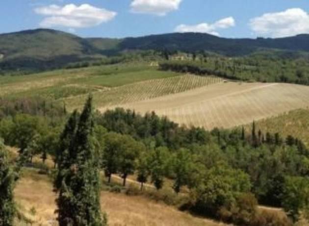 L'European Green Deal e le soluzioni basate sulla natura