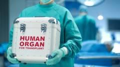 Donazione organi, si rafforza collaborazione tra Comune Cremona e AIDO