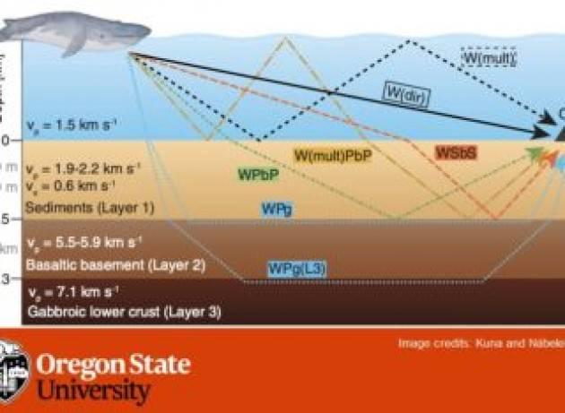 Usare i canti delle balenottere per gli studi sismici della crosta oceanica?