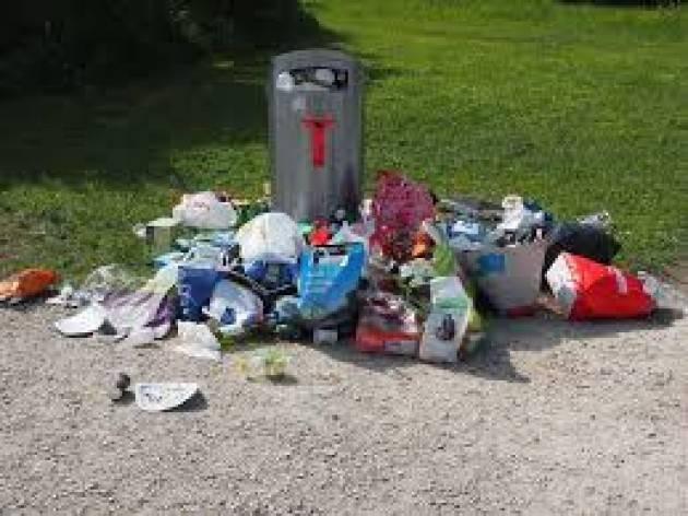 Manutenzione del verde. Un webinar sulla corretta gestione dei rifiuti