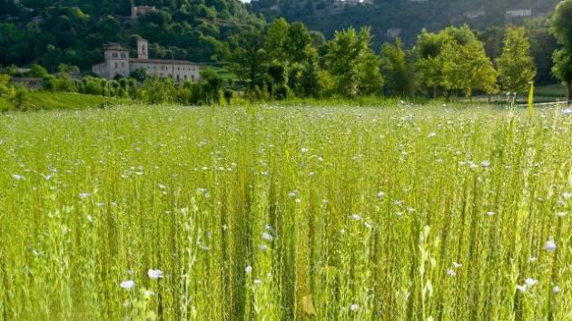 A progetto biodiversità Bergamo Premio nazionale Paesaggio