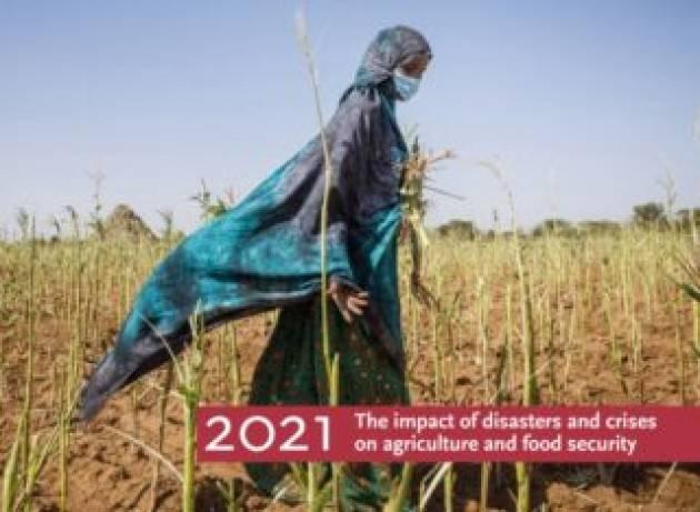 Sistemi agroalimentari colpiti pesantemente dalle calamità naturali