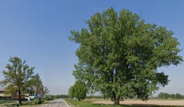 M5S Cremona  Mozione: Tutela del Patrimonio Naturale sul territorio cremonese