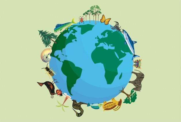 La biodiversità a rischio, minaccia la sopravvivenza umana
