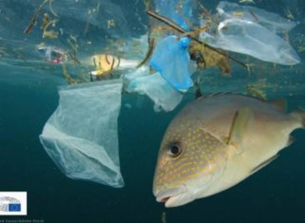 Il Parlamento europeo chiede di ridurre i rifiuti marini di pesca e acquacoltura e il polistirene espanso