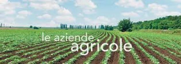 Quattro webinar dedicati alle aziende agricole