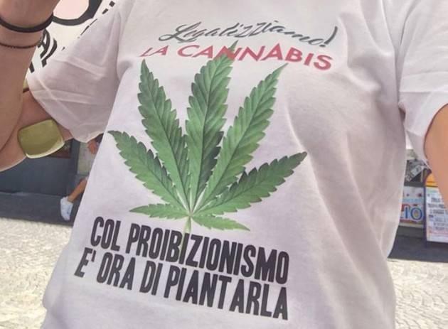 ADUC Legalizzazione cannabis. Urge! Referendum!