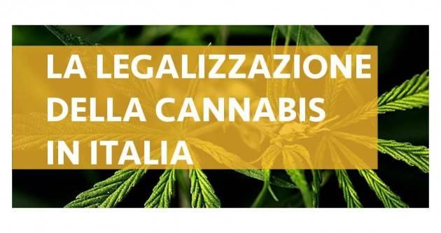 ADUC Legalizzazione cannabis. Gli irrazionali colpi di coda del proibizionismo