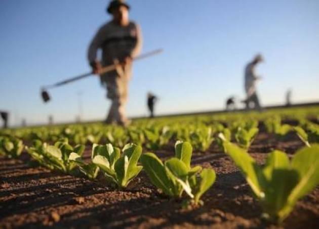 Lombardia, Voltini: ''Con Agri 5.0 investiamo sull'agricoltura del futuro''