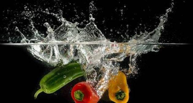 WATER TO FOOD
