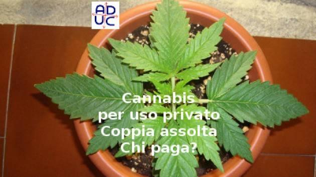 ADUC Cannabis per uso privato. Coppia assolta. Chi paga? Quanti processi ancora?