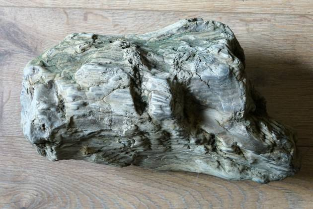 San Daniele Po Davide Persico  Un tronco  fossile pietrificato  proveniente dal PO