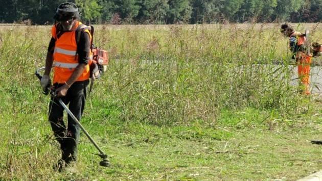Cremona Iniziati gli sfalci dell'erba, in meno di un mese saranno conclusi