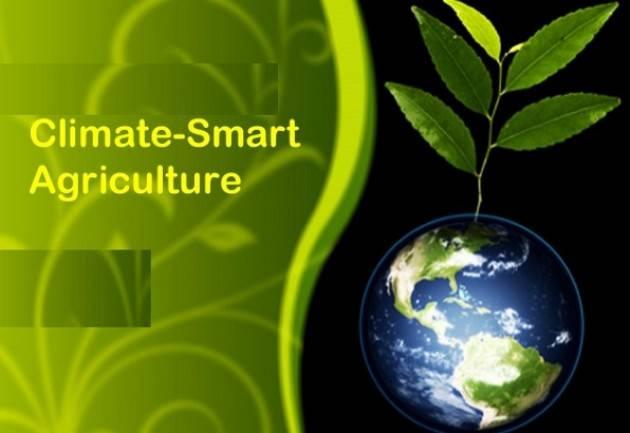 Calvatone GAL Oglio Po sarà online con il webinar Agricoltura sostenibile