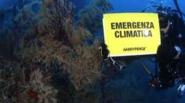 Greenpeace: mare italiano sempre più caldo e perdita di biodiversità