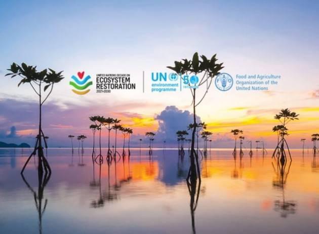 Ripristinare la biodiversità su un miliardo di ettari degradati per rispettare gli impegni ambientali globali