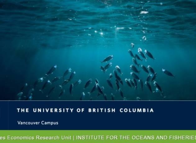 I principali ostacoli al finanziamento di un'economia oceanica sostenibile