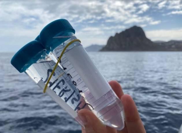Monitorare le microplastiche nel Mediterraneo con la citizen science