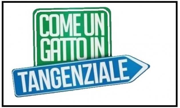 Cremona Luca Nolli (M5S) Gattile di via Bissolati