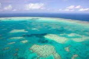 La Grande Barriera Corallina Australiana sia dichiarata Patrimonio dell'umanità in pericolo