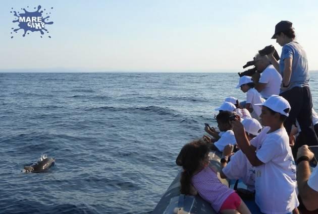 Catania  gli studenti con Blu di MareCamp puliscono il mare