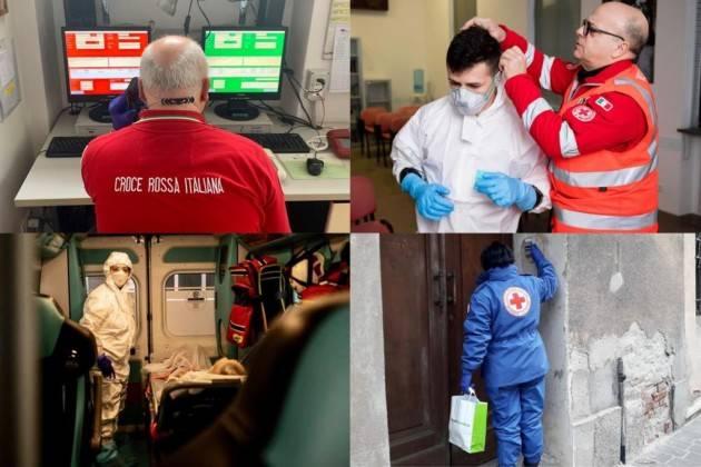 La Croce Rossa e la tutela dell'ambiente   Loredana Uberti CRI Cremona