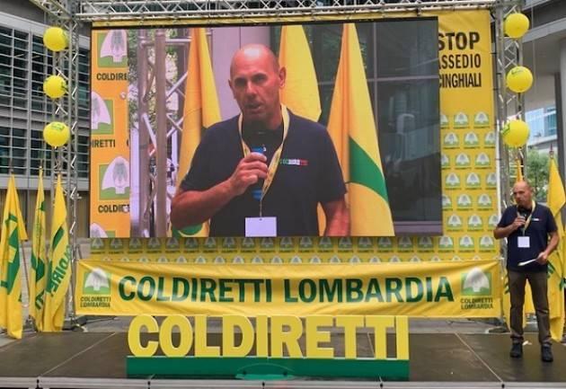 Coldiretti Cinghiali, protesta degli agricoltori: tanti cremonesi  a Milano