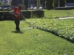 Cremona Manutenzione verde pubblico, dal 12 luglio 4° ciclo di interventi