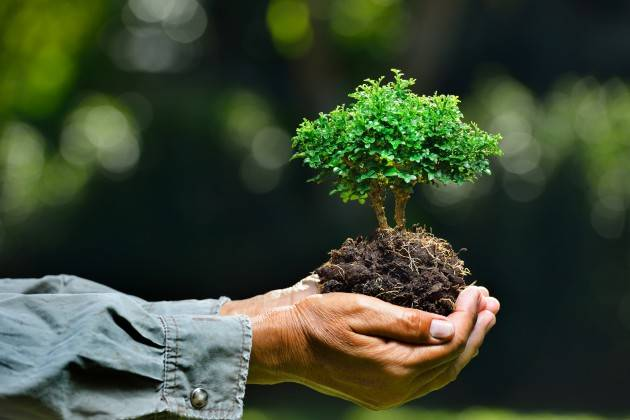 Federconsumatori Ambiente: sempre più evidenti gli effetti dell'emergenza climatica