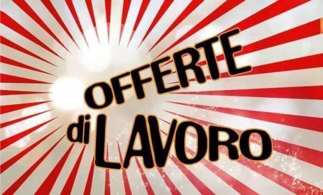 Attive 177 offerte lavoro CPI 20 /07/2021 Cremona,Crema,Soresina e Casal.ggiore