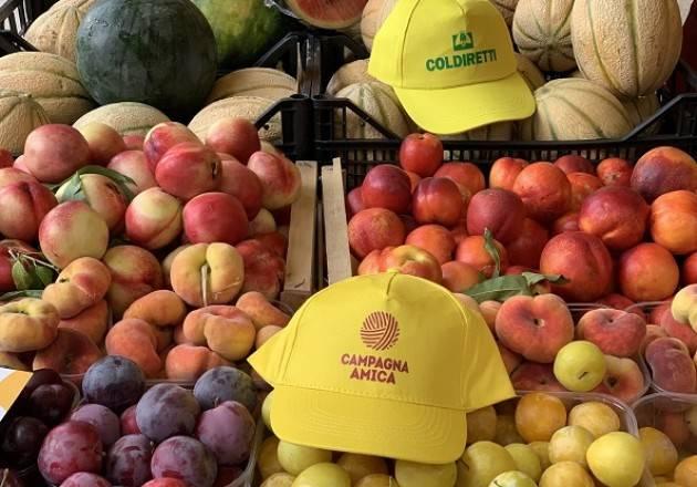 Domenica 25 luglio 'Tintarella day' al mercato di Campagna Amica a Cremona