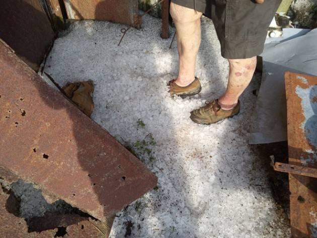Maltempo, nubifragio nel Casalasco Coldiretti Cremona: Gravi danni all'agricoltura