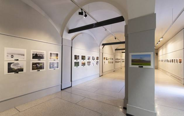 Cremona Prorogata fino al 5 settembre la mostra Natura – Premio Roberto Bonali