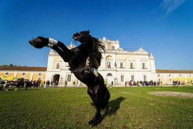 Villa Reale Monza e Reggia Carditello si promuovono insieme
