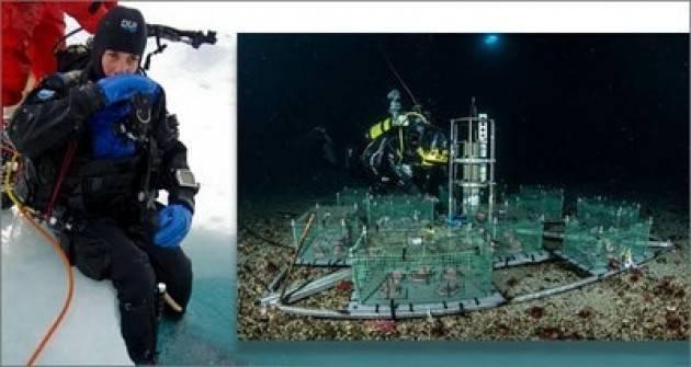 Primi dati dal laboratorio sottomarino del Mare di Ross