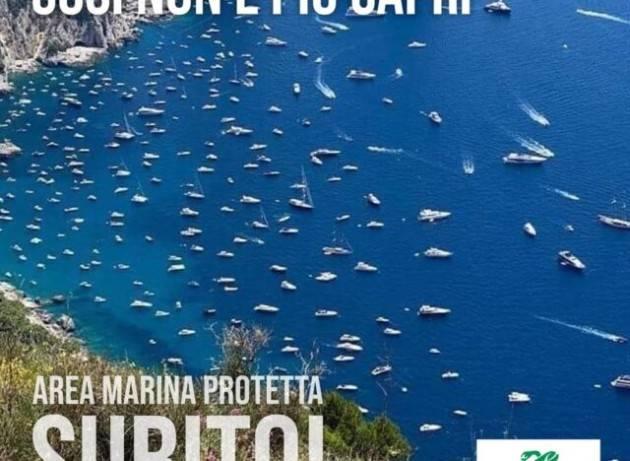 Troppe barche sotto costa a Capri, il Comune mette boe e barriere