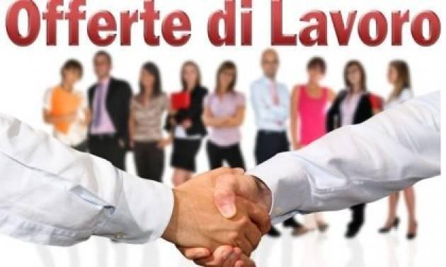 Attive 122 offerte lavoro CPI 03/08/2021 Cremona,Crema,Soresina e Casal.ggiore