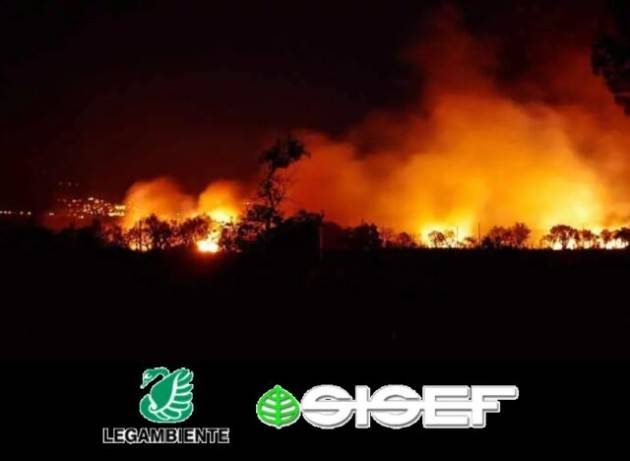 Distrutti dagli incendi 62.623 ettari