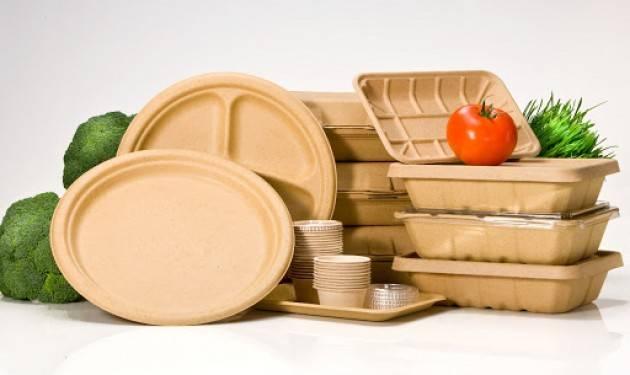 Plastiche monouso, dal Governo via libera alla versione italiana della direttiva Sup