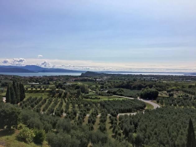 Alla scoperta dei vini della provincia di Brescia