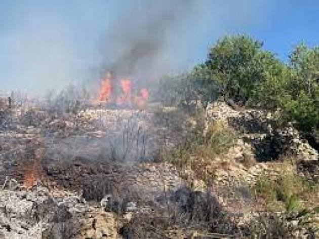 Incendi in Sicilia e Calabria: non è una guerra, è una mattanza