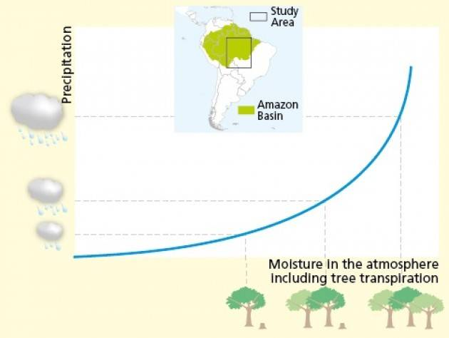 la deforestazione in Amazzonia riduce le piogge