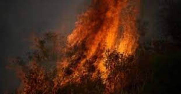 Record d'incendi nell'estate italiana